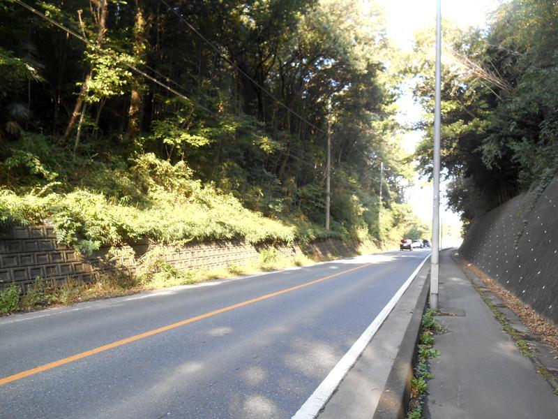 道路沿い法面除草業務