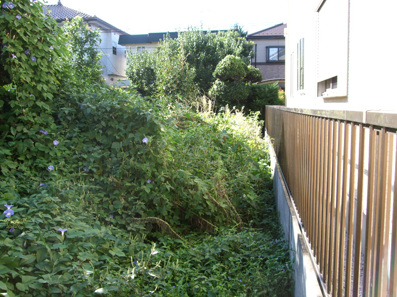 個人様宅の庭除草業務